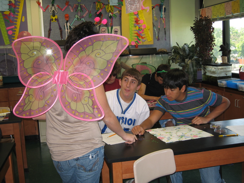 Natural Selection Butterfly Lab